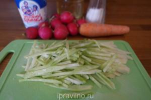 салат с редькой, редиской и морковью
