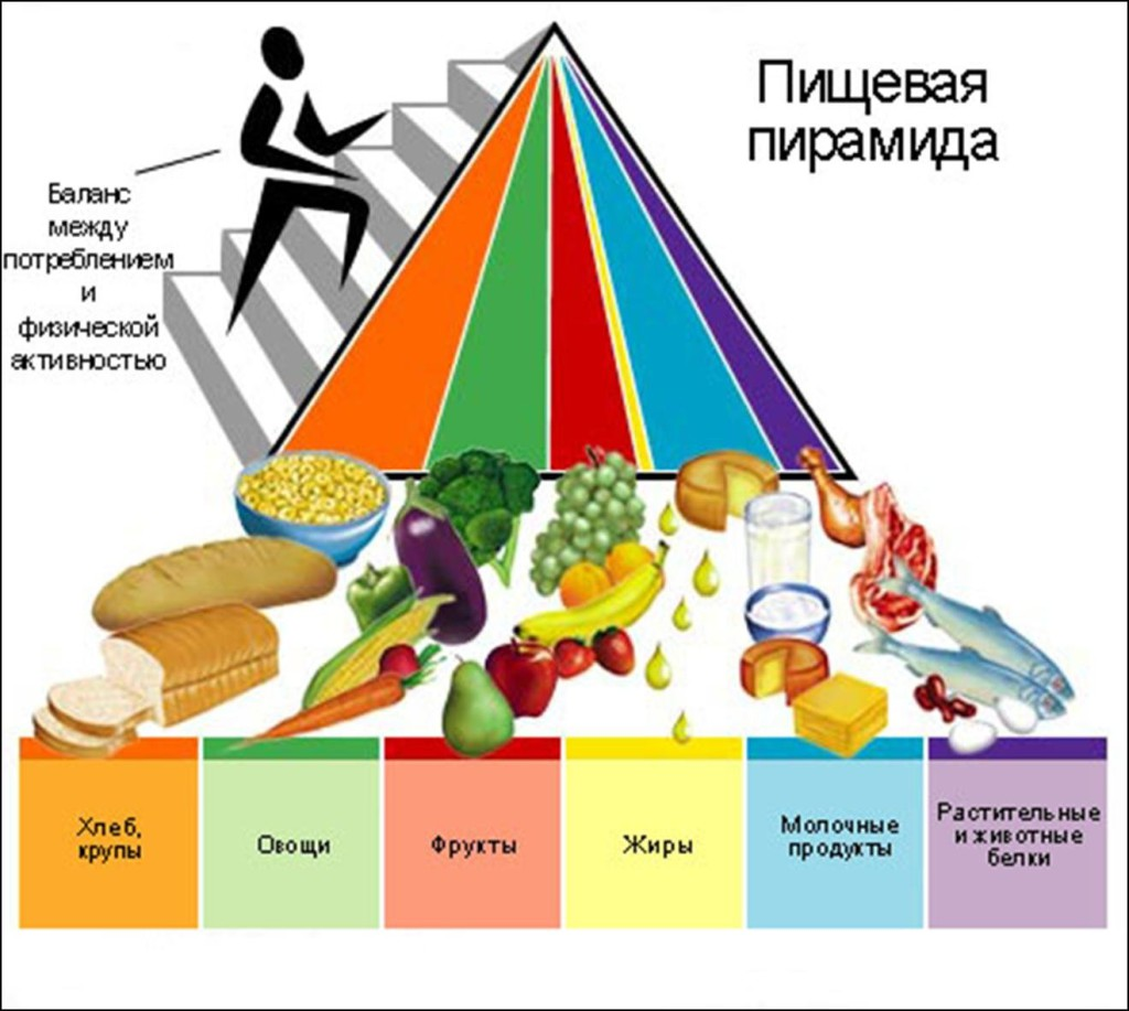 healthy nutrition and correct relax method essay Exercise vs dieting essay:: 4 tips for a healthy diet and better nutrition that weight loss will follow the correct and continued use.