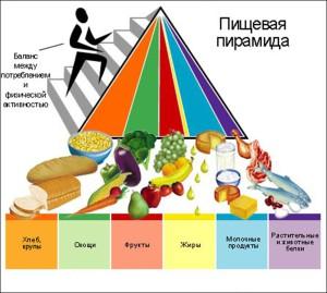 пирамида правильного питания 2005 год